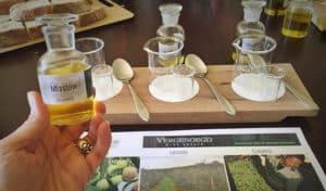Vergenoegd olive oil blending experience.