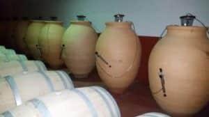 Clay amphorae