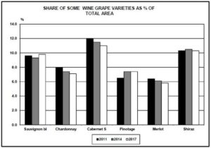 Tim James: On the paradox of more wine from fewer vines, Tim James: On the paradox of more wine from fewer vines