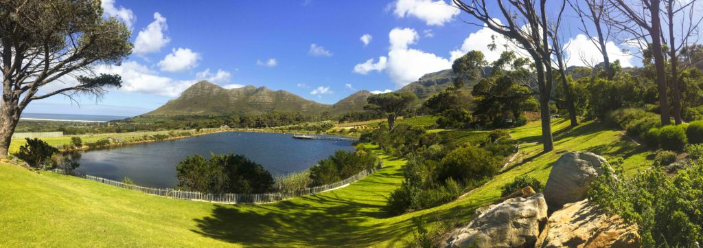 Cape Point Vineyards is widely regarded as one of the best picnic spots in the Winelands