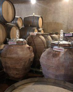 The Avondale terracotta pots.